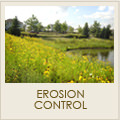 Erosion control services including plants and landscaping