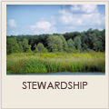 Stewardship and Maintenance